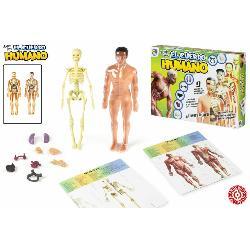 CUERPO  HUMANO  CON  ADN  3D